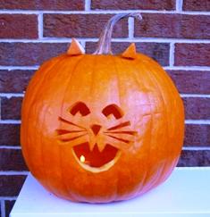 Alan's pumpkin