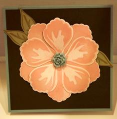 Blush Blossom Flower