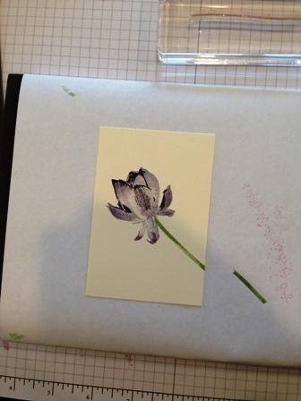 Lotus Blossom lesson 5