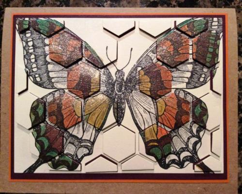 Butterfly by Melissa w Wink of Stella
