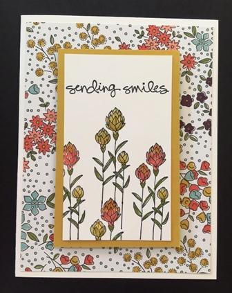 Flowering Fields w DSP 1