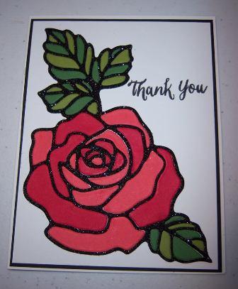 Rose Wonder 2