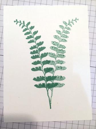 Fern leaf both directions