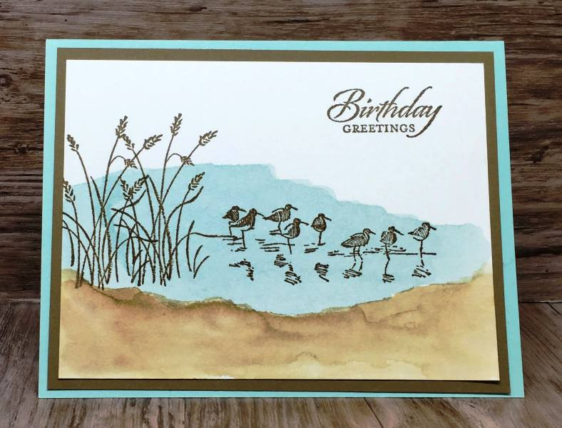 Wetland Birthday