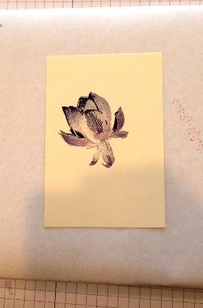 Lotus Blossom lesson 4