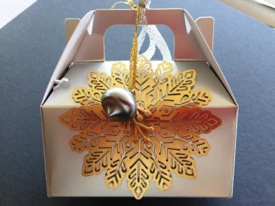 Silver box for Christmas