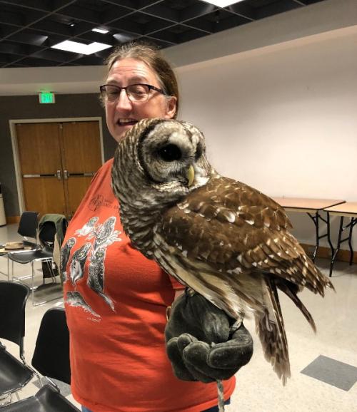 Barred Owl w Dana
