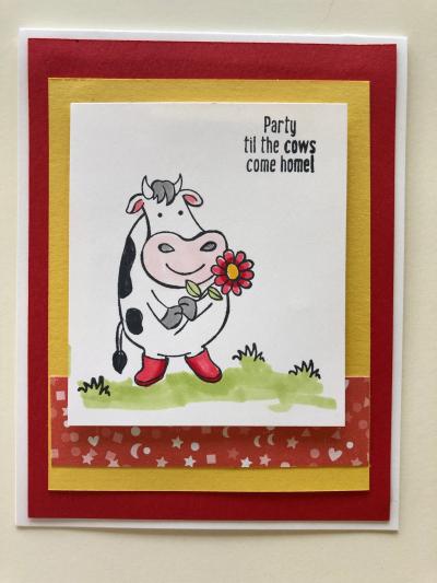 Cow w DSP w little stars