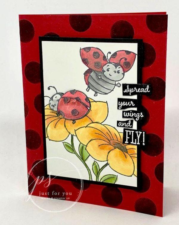 Little Ladybug Fly Away Card