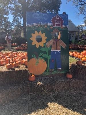 Pumpkin take a picture